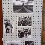 Holocausto 6